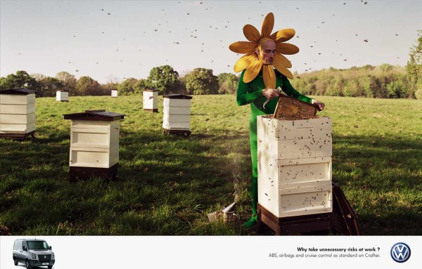 VW-Risk3-Bees-pr